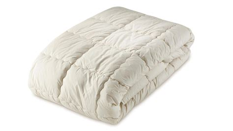 Organic Cotton Futon Mattress by Organic Cotton Filled Mattress Covers Toppers