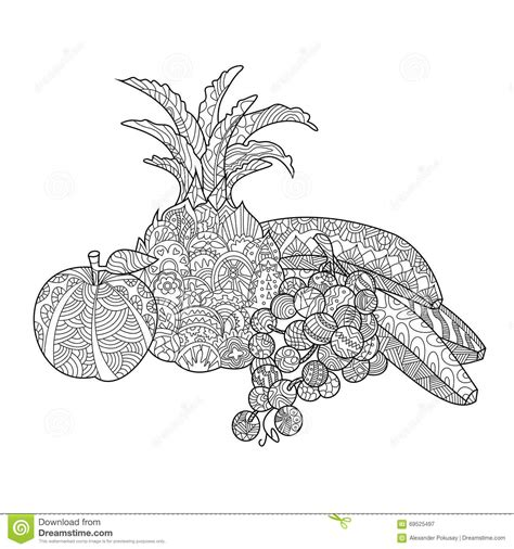 fruit zentangle still coloring book antistress style vector