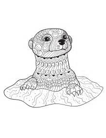 otter coloring pages an otter from animals an coloring book