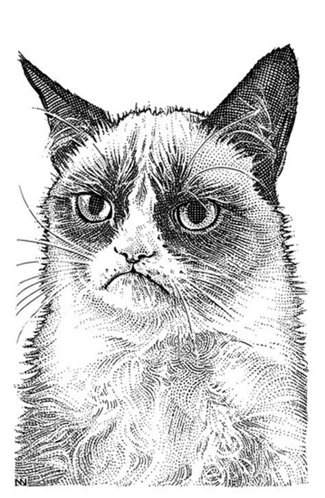 grumpy cat    deal wsj portrait flavorwire