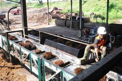 Minyak Kelapa Di Pasar pengusaha kelapa sawit sambut baik sertifikasi ispo