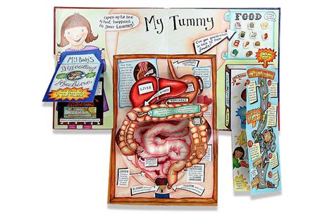 my pop up body book 1406317926 my pop up body book walker books enginou play learn