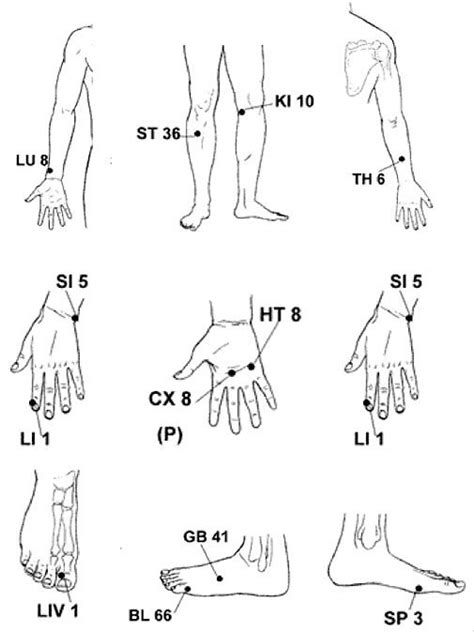 point to diagram acupuncture points and qigong on