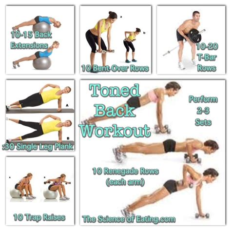 search results for back toning exercises for at