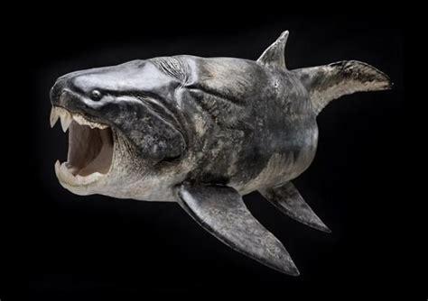 imagenes animales prehistoricos los 10 animales prehist 243 ricos m 225 s aterradores dunkleosteus