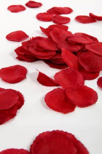 petals for valentines day 117 best images about valentines day ideas on