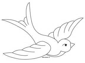 pics photos coloriage oiseau dessin pigeon colorier