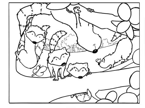 raccoon coloring page raccoon coloring page az coloring pages