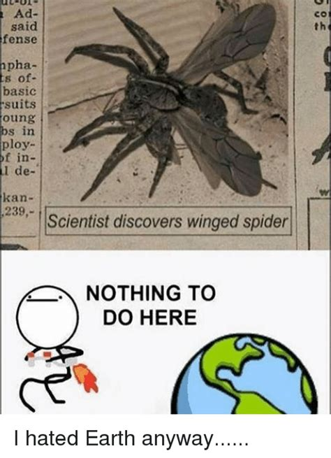 Memes About Spiders - 25 best memes about winged spider winged spider memes