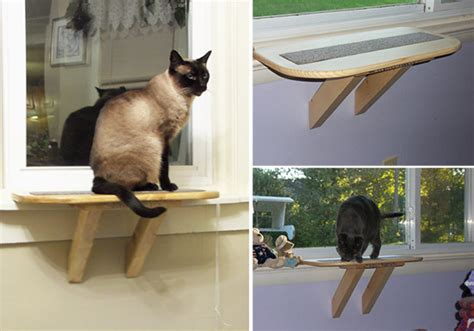 cat seat for window build cat window seat images