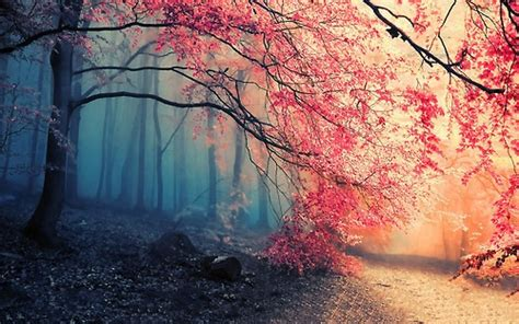 imagenes de paisajes que inspiran tranquilidad paz y tranquilidad im 225 genes taringa