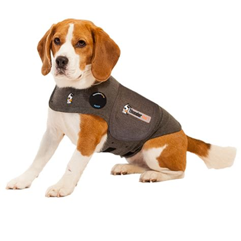 thundershirts for dogs thundershirt dogs