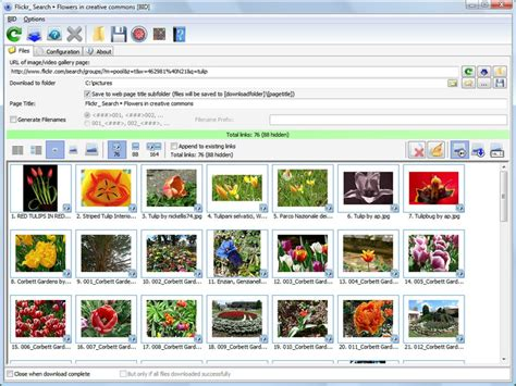 Firefox Addon All Images