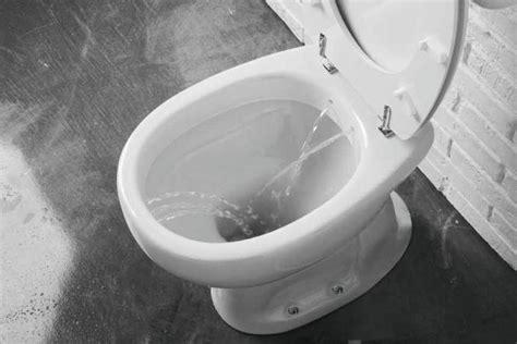 Wc Bidet 2w1 by Wc Bidet Dla Przedszkolaka Czyli Codzienna Higiena Dla