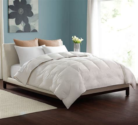 decorative down comforter bedroom white down comforter with blue wall design and