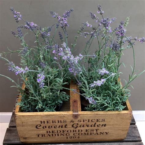 Lavender Planters by Artificial Lavender Plants In Wooden Planter By Funky