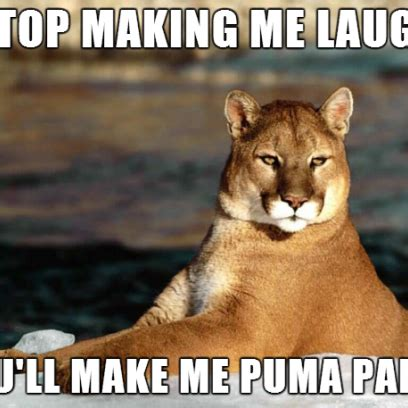 Make Me Laugh Meme - puma pants make me memes
