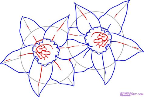 how to your step by step how to draw daffodils step by step flowers pop culture free drawing