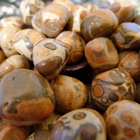 Brown Jasper brown rhyolite leopardite safari jasper tumbled pebble