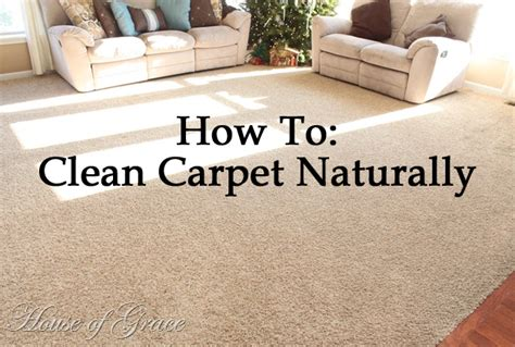how to clean rug at home how to clean your carpets naturally stay at home susie