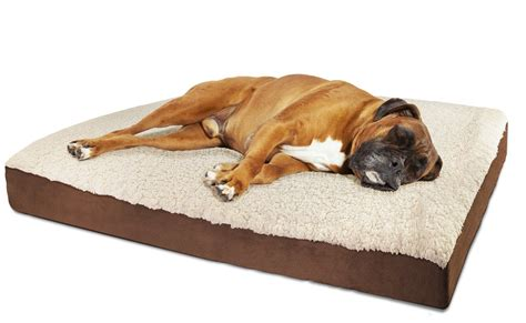 dog beds walmart coolaroo frame dog bed walmartcom dog beds and costumes