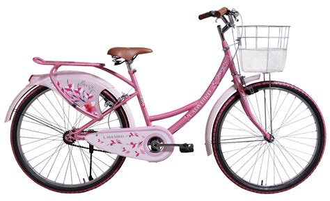 Pink Cycle bsa bird cycle cycle in pink yellow purple