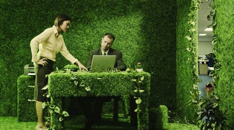 Your Office Greener by Eco Libris 5 Best Tips To Make Green Office