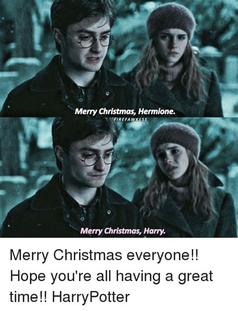 Harry Potter Christmas Meme - 25 best memes about having a great time having a great