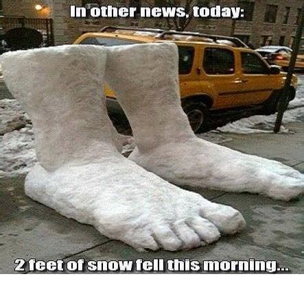 Funny Snow Memes - in other news today jokes memes pictures