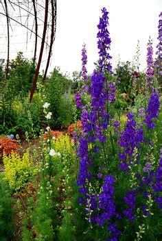 nwa botanical gardens 1000 images about travelhost of northwest arkansas on
