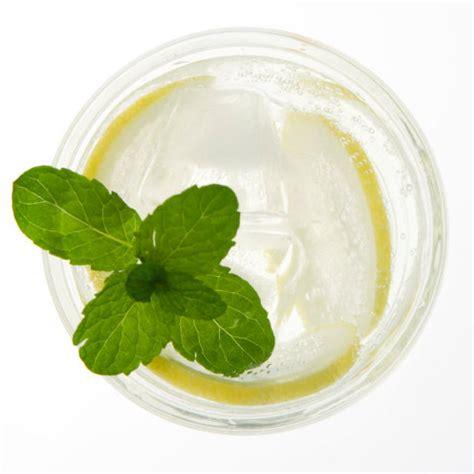 Biohalty Herbal Drink beverage garden hgtv