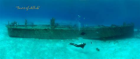 best dive locations the best dive in the bahamas scuba diver