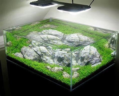 Lu T5 Untuk Aquascape 5 tips om je aquarium in topvorm te houden tijdens de vakantie