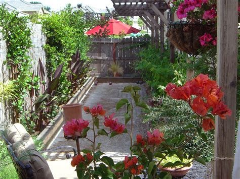 flowers for backyard beautiful tropical backyard garden house design with