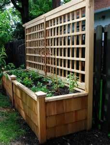 Patio Tomatoes Care Design Tips And Ideas Landscaping A Small Yard And Using