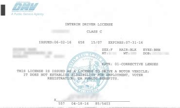 temporary paper drivers license template www picsbud