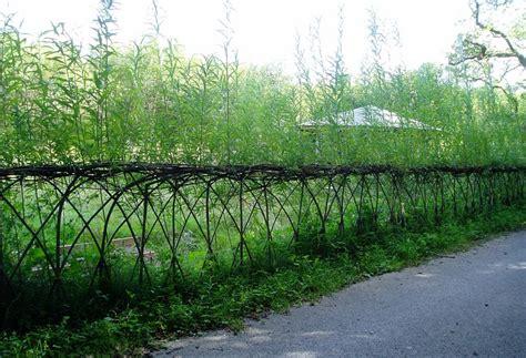 23 amazing exles of living willow fences home design garden architecture blog magazine