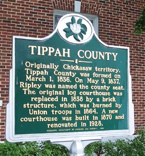 Ripley County Court Records Msgenweb