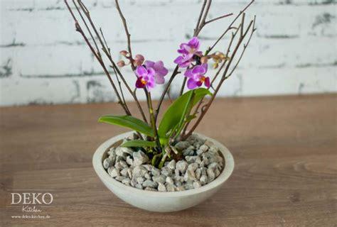 Orchideen Deko Ideen by Deko Ideen Mit Orchideen Waitingshare