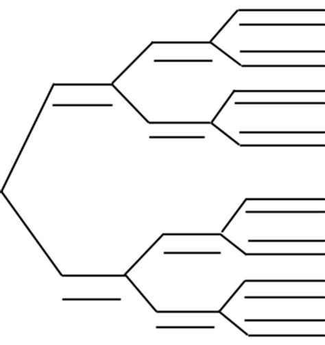 Dichotomous Key Template by Dichotomous Key Thinglink