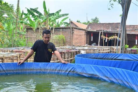 Bibit Lele Sidoarjo penyuluh perikanan anjurkan sistem kolam bundar