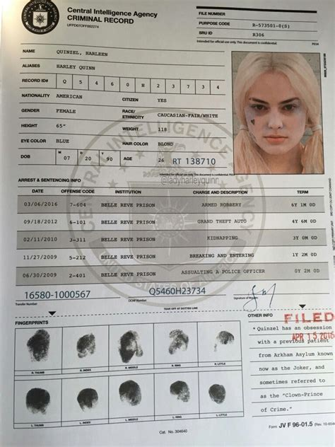 Find Out If I A Criminal Record Harley Quinn S Criminal Record From Squad Squad