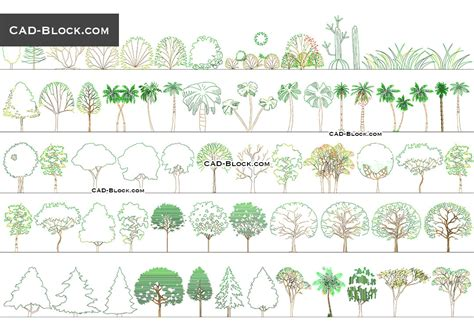 fioriere dwg trees side view free cad blocks