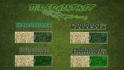 painting dormant greens turf paint