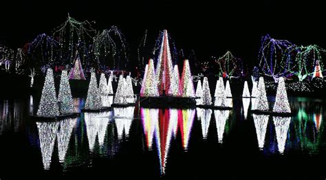 columbus zoo lights admission columbus zoo wildlights canned food library and zoo