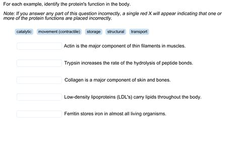 7 protein functions solved for each exle identify the protein s function