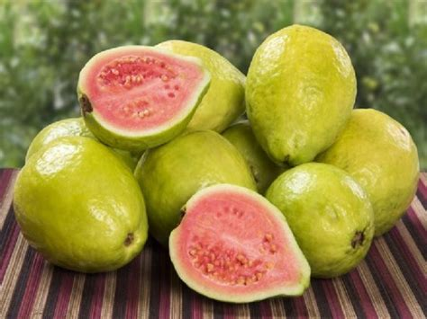 Obat Herbal Haid Tak Lancar 6 ramuan pencahar alami yang gang dipraktikkan bab