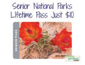 senior lifetime national parks pass for 10 can take 3