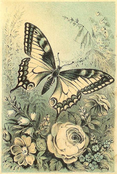 imagenes vintage bonitas mariposas para decoupage aprender manualidades es