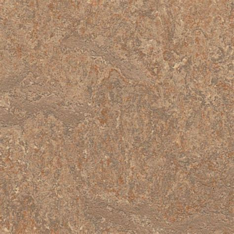 marmoleum click shitake 9 8 mm thick x 11 81 in wide x 11
